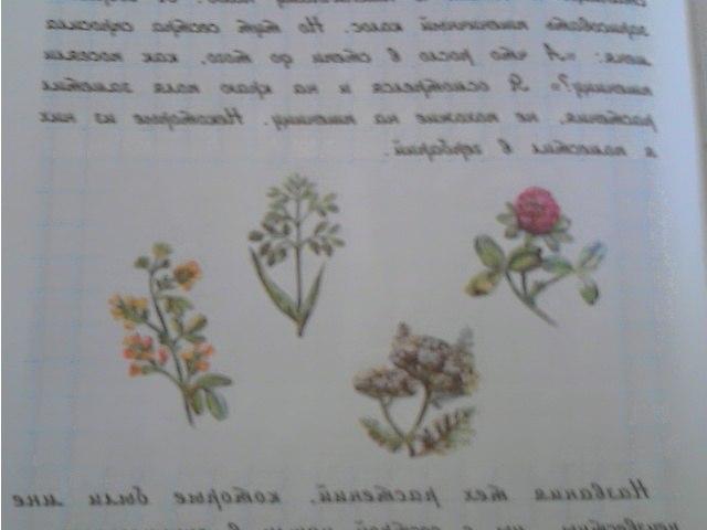 учебник кубановедение 4 класс