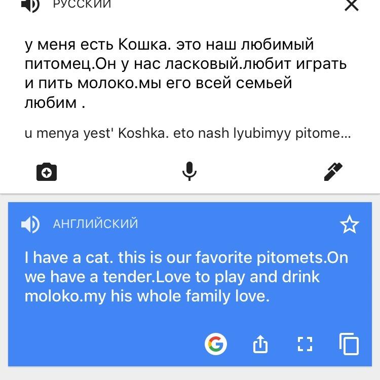 Рассказ про кошку на английском языке 3 класс
