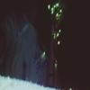 klipelpolina