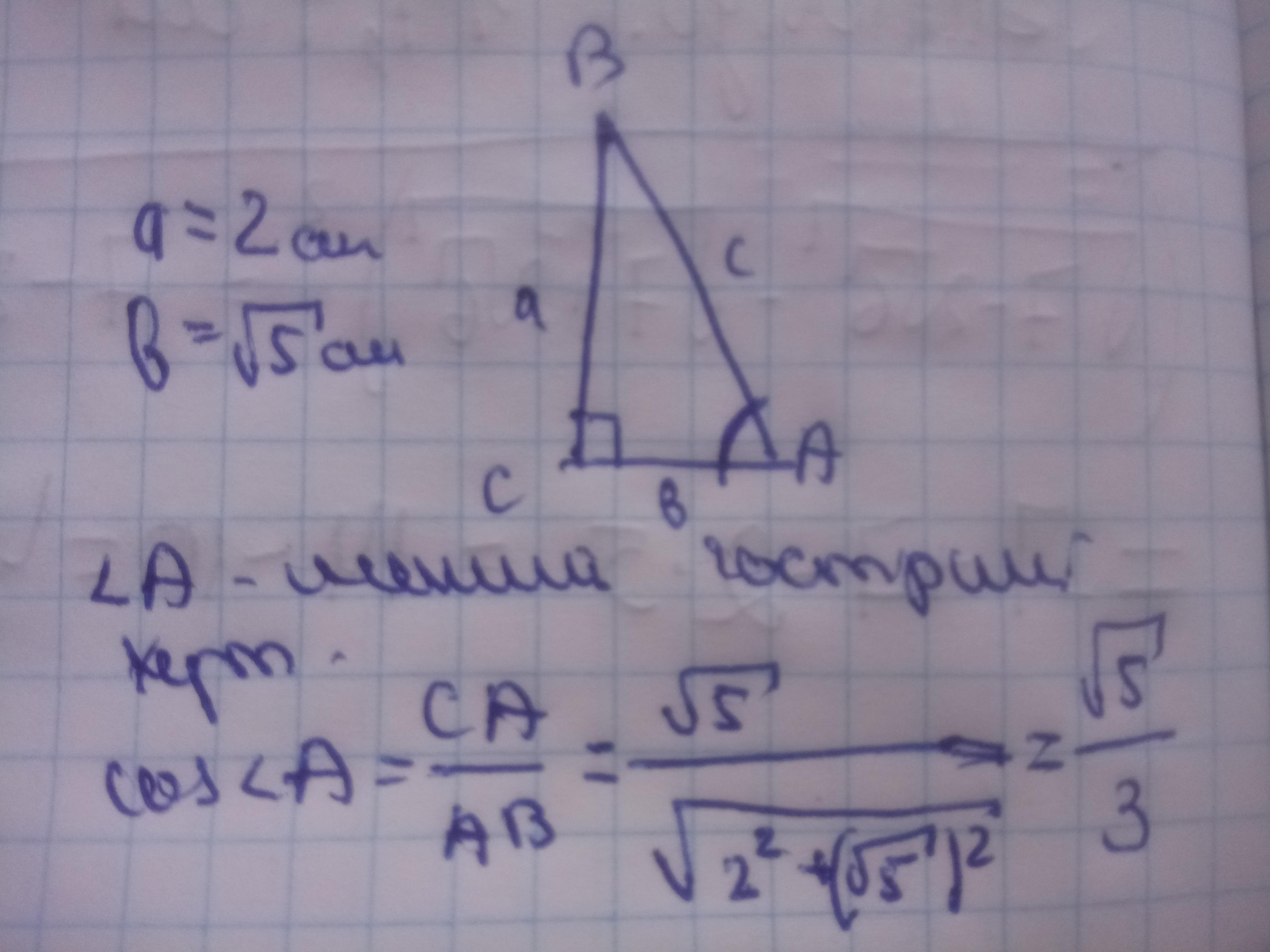 Катети прямокутного трикутника дорівнюють 2 см і