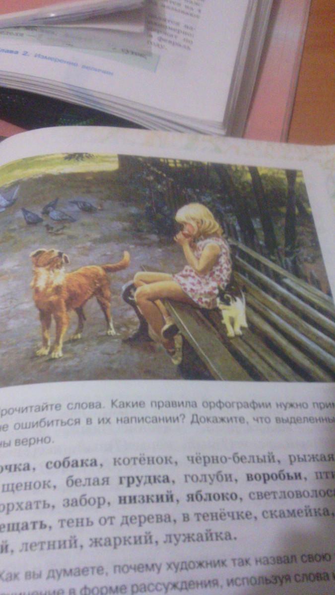 Почему широков назвал свою картину друзья сочинение от имени мальчика