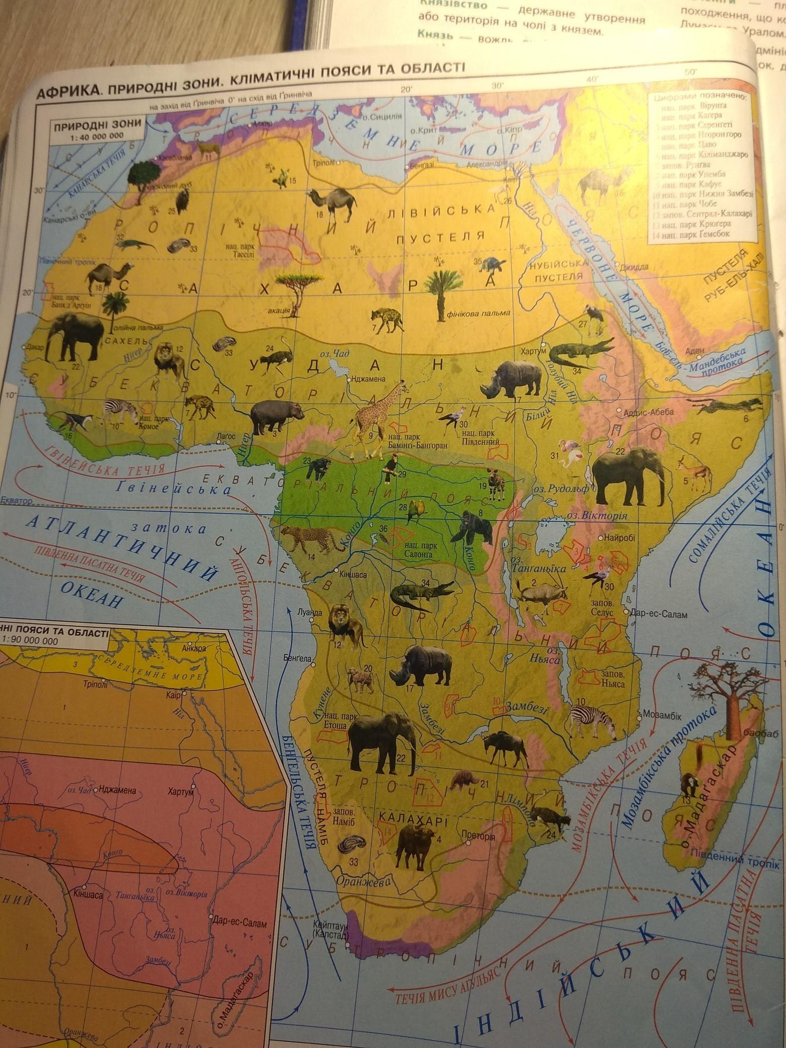 40 процентов африки занимают